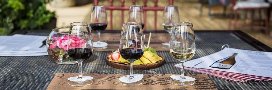 Vinícola Matetic: empreendimento familiar que virou destino turístico e referência em produção de vinhos na costa do Chile